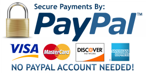 secure payment by paypal on designobject web shop