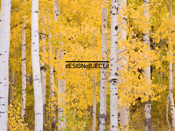Catalogo Designobject 2014