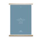 turtle-animal-totem-art-print