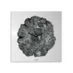 orologio-parete-design-wall-clock-life-white